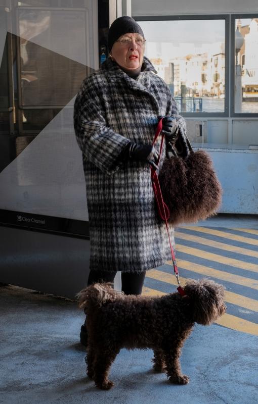 doggy-and-bag